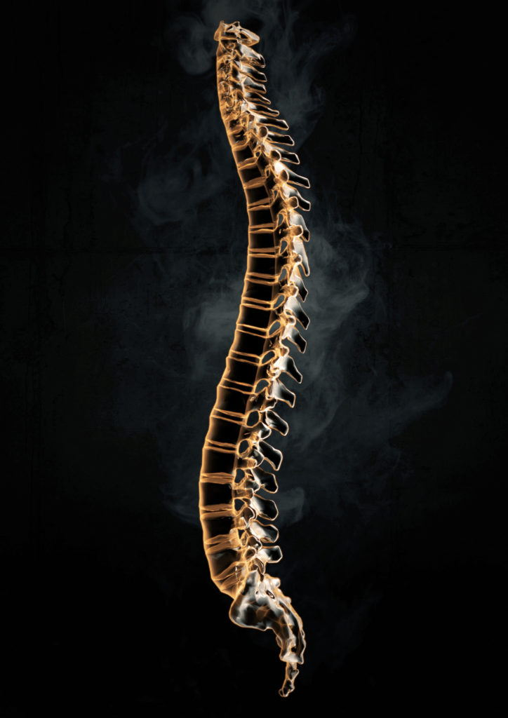 cgi xray illustration of a human spine on a black background
