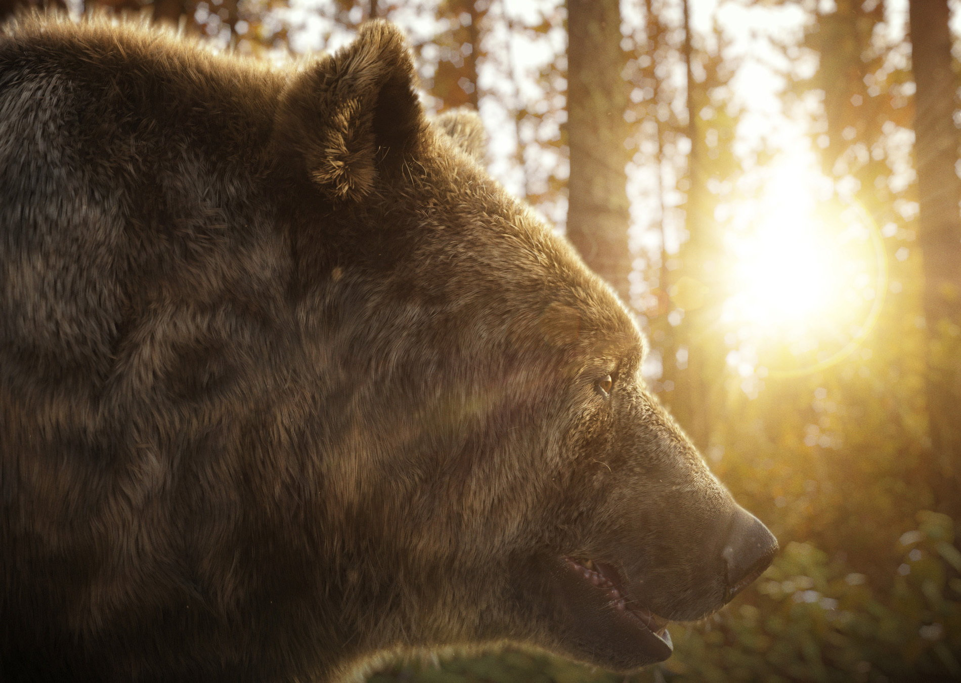 boom cgi bear in a forest