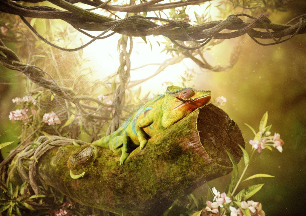 CGI of a chameleon in a jungle